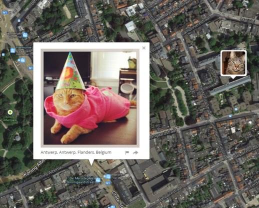 'Ik weet waar uw kat woont'