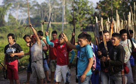 Amazonestam breekt benen van illegale houthakkers