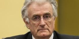 'Schuld van Karadzic bewezen'