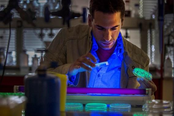 Met bacteriën en meelwormen de wereld verbeteren