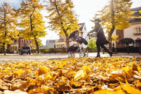 Zeer abnormale hoge minimumtemperatuur in oktober