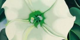 Het bloemenmeisje van 44,4 miljoen dollar