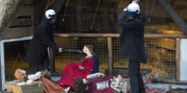 Actievoerders zetten kerststal Brussel op stelten