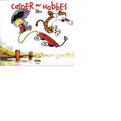 Uit 'Casper en Hobbes' van Bill Watterson.