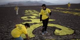 Greenpeace dient klacht in tegen Nederland