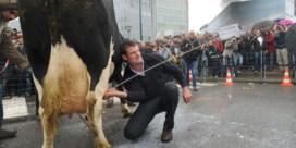 'Onze Europese melk kan naar het Verre Oosten'