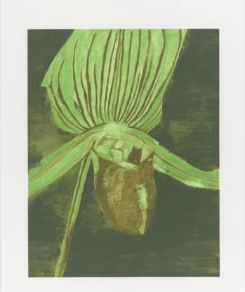 'Orchid', 2013, zeefdruk.