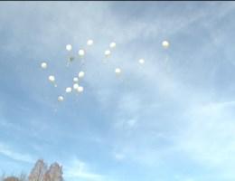 Witte ballonnen in Heverlee voor Sierre