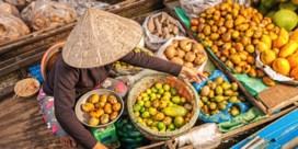 Van Hanoi tot Ho Chi Minh City: proeven van Vietnam