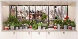 IKEA en food: op zoek naar de keuken van de toekomst