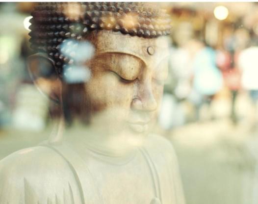 Edel Maex is zenboeddhist, maar noemt zichzelf helemaal geen zweverig mens. 'Daar ben ik veel te aards en te lijfelijk voor.'