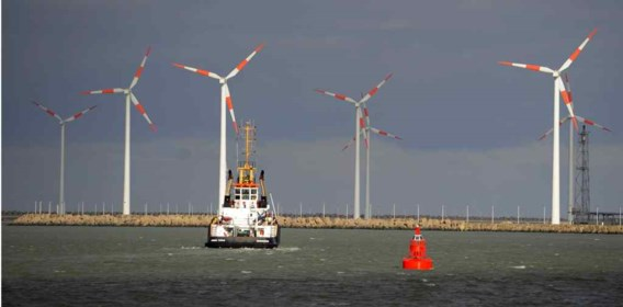 Windmolens in de haven van Zeebrugge.