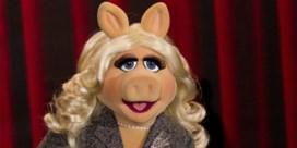 Miss Piggy krijgt feminismeprijs in VS