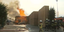 Brand zet houtbedrijf Sint-Gillis-Waas in lichterlaaie