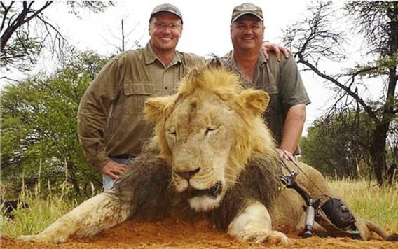 Jacht op Amerikaanse tandarts die Cecil de leeuw doodde