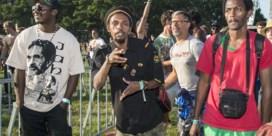 Reggae Geel: meer dan Bob Marley-T-shirts, rastakapsels en wiet?