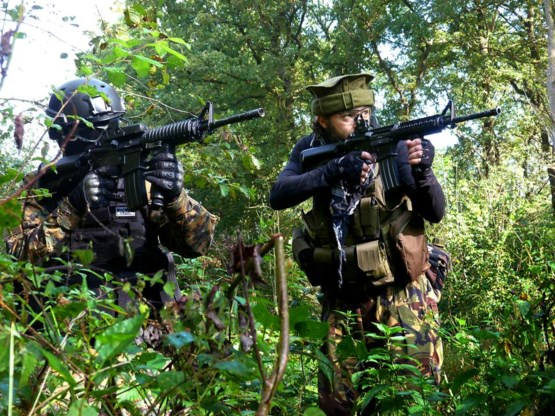 Helft Belgische jihadisten had al strafblad voor vertrek