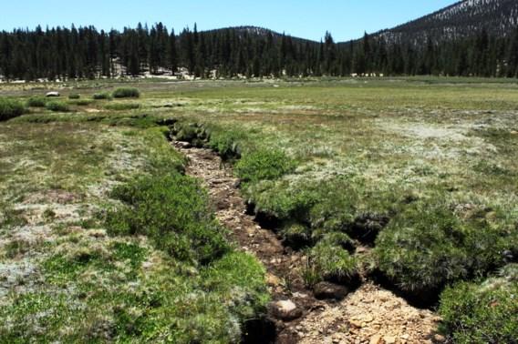 Vermiste vrouw overleeft negen dagen in Sierra Nevada