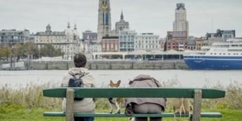 Bart Brinckman over 'Stadslab Antwerpen'