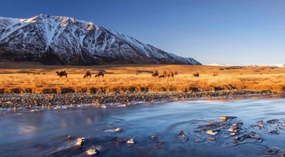 Een zonsopgang in Mongolië. Dit is een van de foto's van Stefan Cruysberghs die werden geselecteerd.