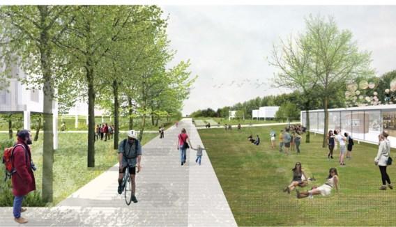 Vooral het idee van een grote groene ader doorheen het gebied en groene 'kamers' sprak aan.