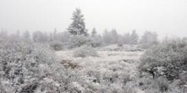 'Koude winters zouden de norm kunnen worden'