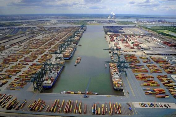 Nu al recordjaar voor cocaïnevangst in Antwerpse haven