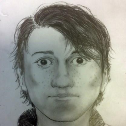 Politie vraagt hulp in zoektocht naar brutale carjacker