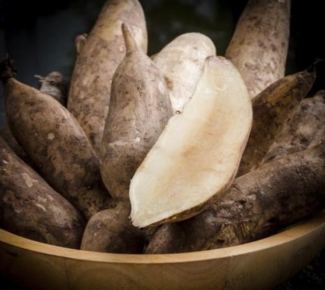 Een yacon ziet eruit als een lange aardappel, maar is ook rauw te eten.