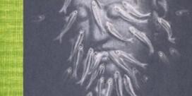 'De onderwaterzwemmer' van P.F. Thomése