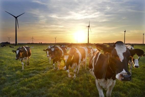 We vinden groene energie belangrijk, maar willen er niet voor betalen