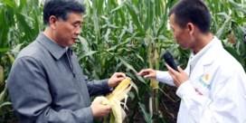 China wil genzaden, tegen (bijna) elke prijs