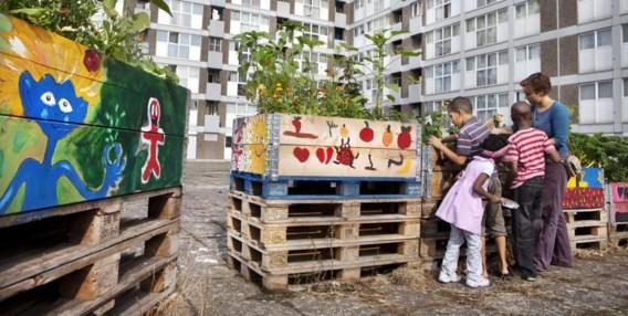 Kinderen uit de Marollen helpen groenten kweken in een collectieve stadsmoestuin.