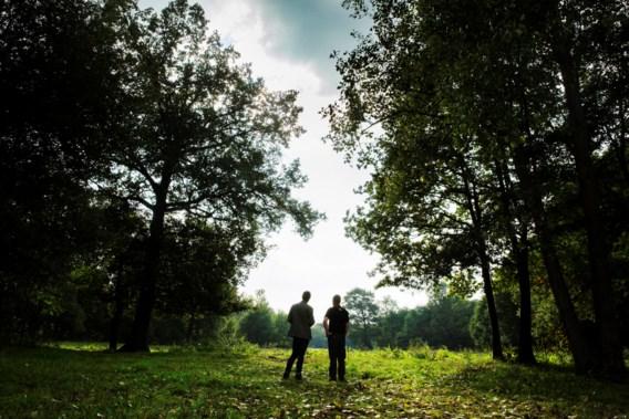 Boscompensatie zorgde afgelopen jaar voor bijna 100 hectare bos