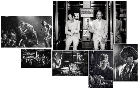 David en Stephen  Dewaele belden even rond en vormden vijftien nieuwe bands, aangevoerd door The Shitz  (uiterst rechts). De  podiumbeesten van Kenji Minogue vonden zichzelf opnieuw uit als Erasmus (uiterst links), Roland heet nu Roland McBeth en de drumm