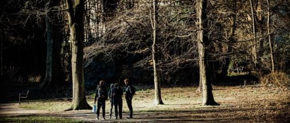 Samen met een begeleider van Natuurpunt voeren leerlingen van De Kolibrie in Domein Hertoghe (Antwerpen) klusjes uit.