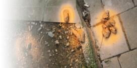Etterbeek zet drollen in de verf