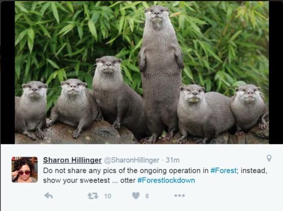 #Forestlockdown: weer beesten op Twitter bij antiterreuractie