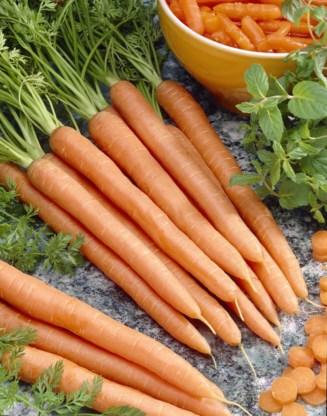 Thuis gefermenteerd wortelsap goudmijn aan nuttige bacteriën