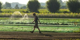 'Help de boer én de natuur'