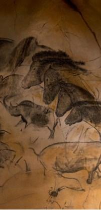 Replica van een grottekening in de Chauvet-grot.
