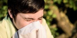 Pollenalarm: seizoen gaat stevig van start