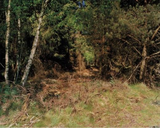 De sluipschutter op de foto niet gevonden? Hij zit in het droge gras, een tikje links van het midden.