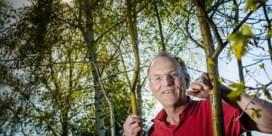 Lubbeek vraagt dat u uw tuin laat verwilderen