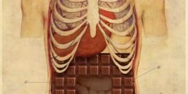 Pintje drinken en chocolade snoepen kleurt de darmflora
