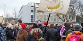 Is IJsland klaar voor de Piratenpartij, en omgekeerd?