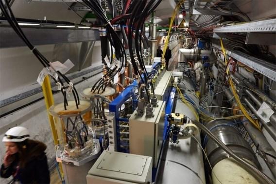 Wezel saboteert grootste deeltjesversneller ter wereld