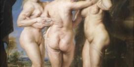 Internet geeft onderzoek  naar Rubens een boost