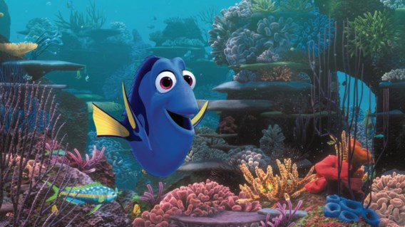 Op zoek naar de verdwenen vis Dory: een déjà-vu van jewelste.