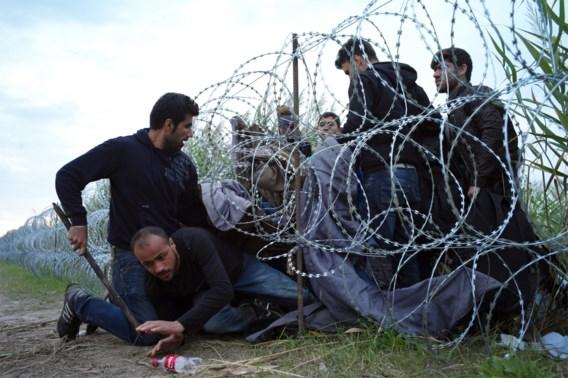 Nieuw anti-Europees referendum: Hongaren mogen stemmen over opname vluchtelingen